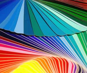 bright colors and palette image
