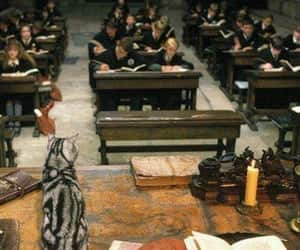 article, harry potter, and if i were image