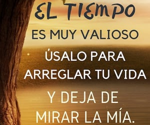 frases, sarcasmo, and reflexiones image
