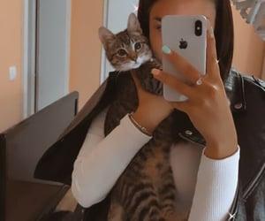 caption, cat, and cuddle image