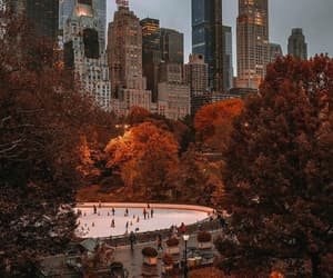 fall, autumn, and city image