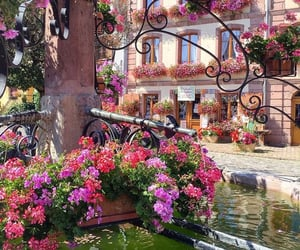 theme, background, and flowers image