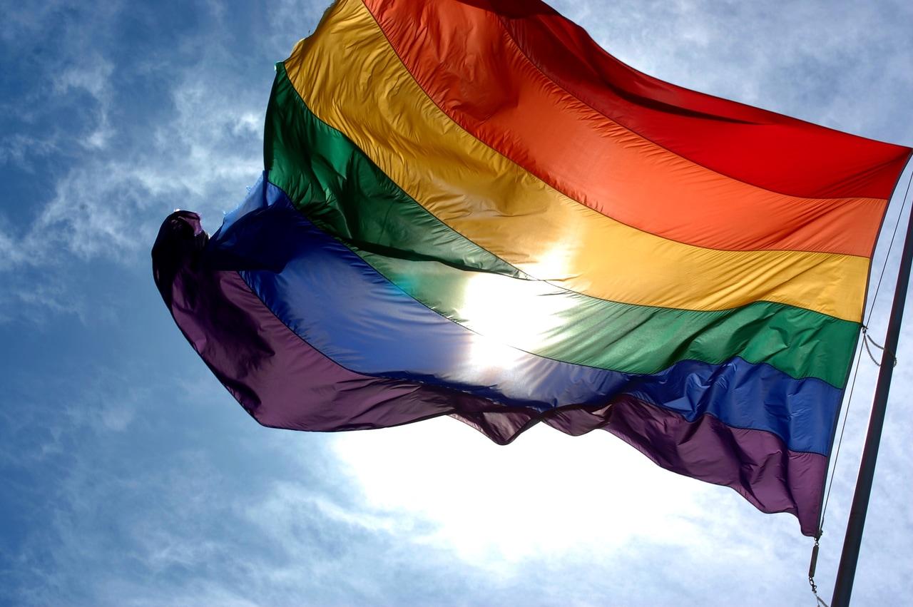 article, gay, and homo image