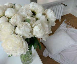decor, flowers, and roses image