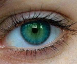 blue eye, eyes, and blue eyes image