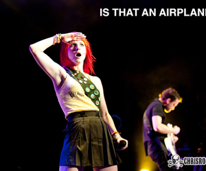 airplane, funny, and hayley williams image