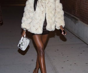 beauty, luxury, and fur coat image