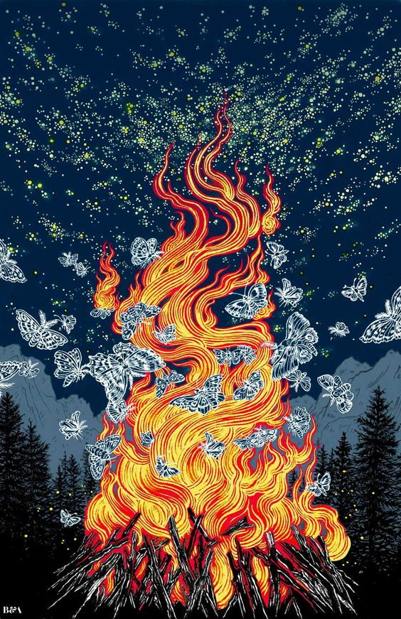 wallpaper, butterfly, and fire image