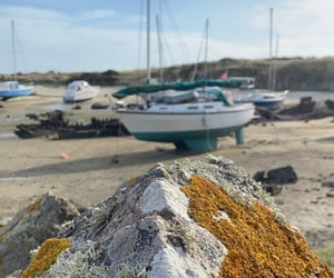 bateau, plage, and normandie image