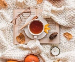 autumn, book, and tea image
