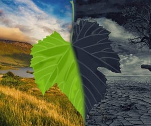climate change, carbon footprint, and agritech image