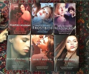 reading, book series, and vampire academy image