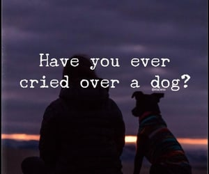 😢 and 🐶 image