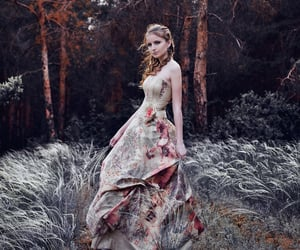 dress, enchanted, and fairytale image