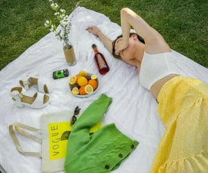 flowers, picnic, and trip image