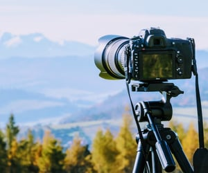camera, cold, and nature image