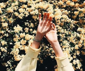 цветы, руки, and фото image