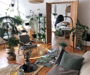 bohemian, greenery, and room inspo image