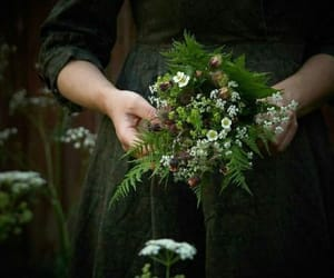 beauty, bouquet, and historical image