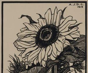 sunflower, girasol, and art image