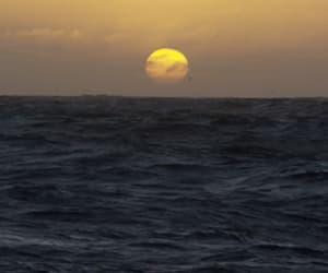 nature, gif, and moon image