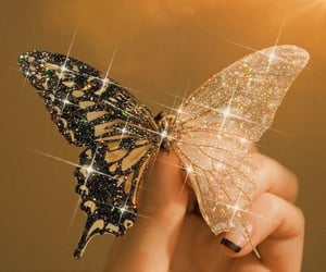 butterfly, glitter, and aesthetic image