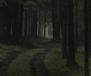 beautiful, dark, and black image