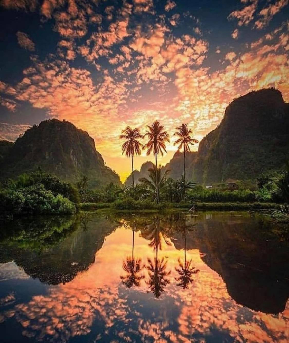 nature, sky, and sunset image