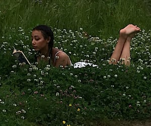 books, meadow, and read image