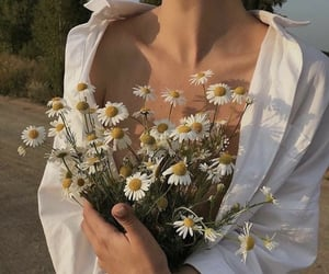 aesthetic, flowers, and shirt image
