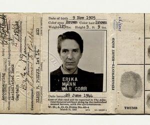 journalist, writer, and presspass image