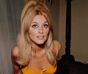 60s, hair, and half up image
