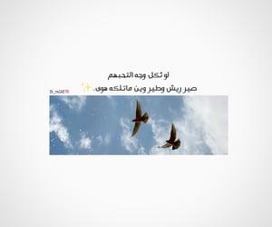 بالعراقي, ﺭﻣﺰﻳﺎﺕ, and شعر عراقي image