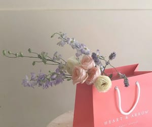 flowers, soft, and cute image