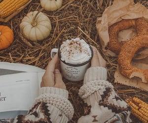 pumpkin, autumn, and cocoa image