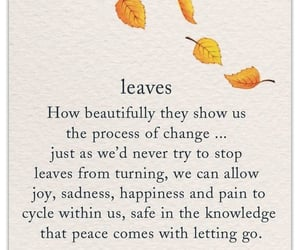 autumn, fall, and letting go image