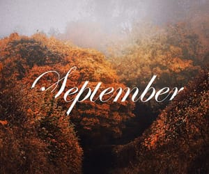 autumn, fall, and September image