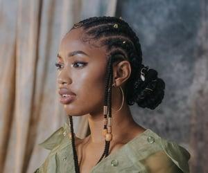 beauty, black, and braids image
