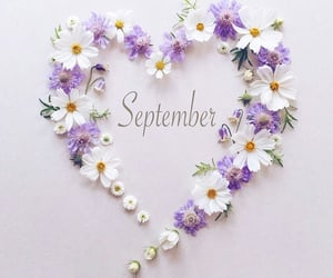 September, month, and شهر image