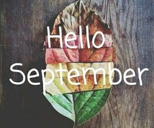 fall, mois, and hello image