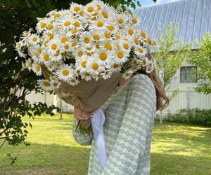 девушка, цветы, and красиво image