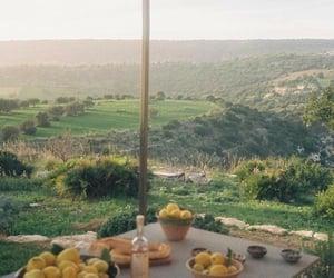 lemon and view image