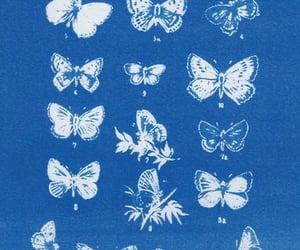 blue image