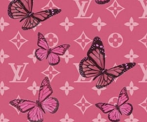 wallpaper, butterfly, and pink image