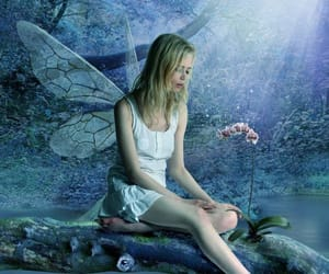 fairy and fairytale image