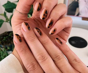 leopard, nails, and Nude image