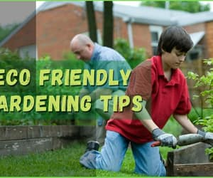 eco friendly, garden, and gardening image