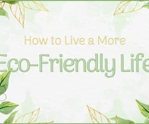 eco friendly, sustainable living, and go green image