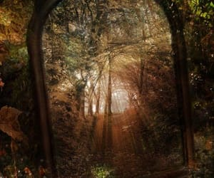 mirror, nature, and fairytale image