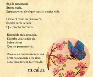 frase, frases, and mariposa image